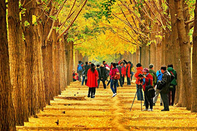 Autumn in China- China Local Tours