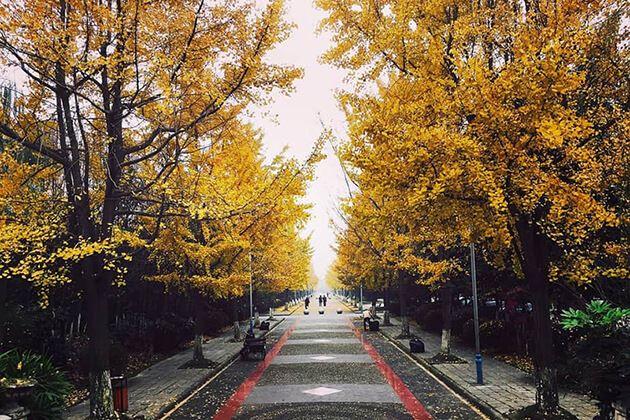 Autumn in Guangzhou, China
