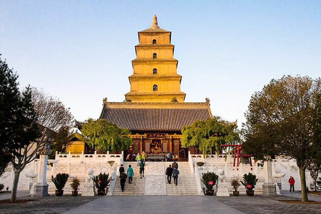 Big Wild Goose Pagoda exploration in China tour