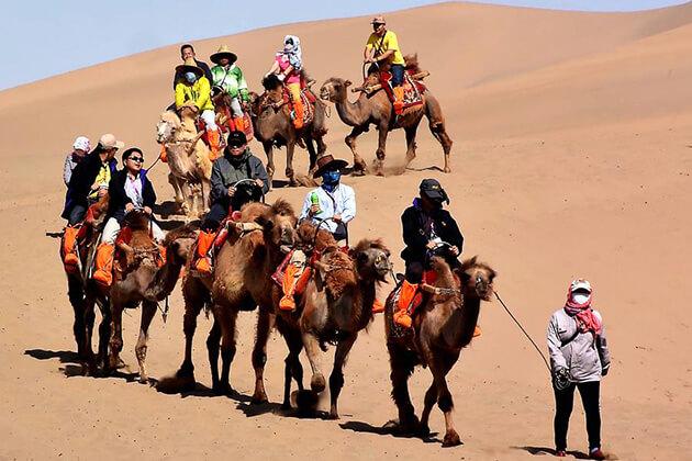 Camel riding at Gobi Desert in China Silk Road Tour