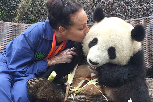 Chengdu Panda exploration from China Family tour