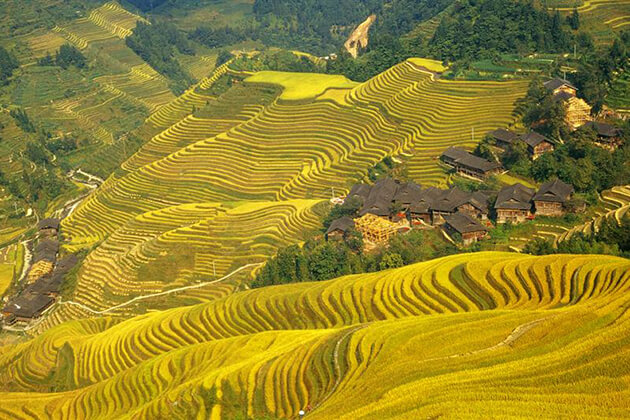 Dragon's Backbone Rice Terraces best place to visit in China tour