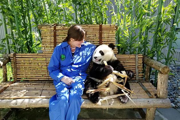 Panda Volunteer Program Tips