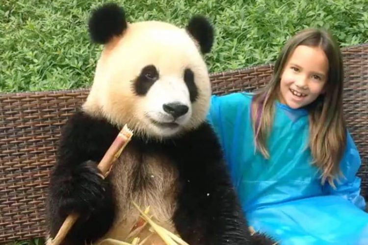 Splendid Chengdu Panda China Tour 9 Days