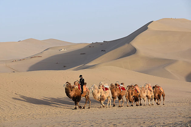 Things to Know Before Visiting Silk Road Tour