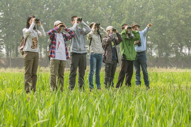 Travelers of China Local tours join Birdwatching