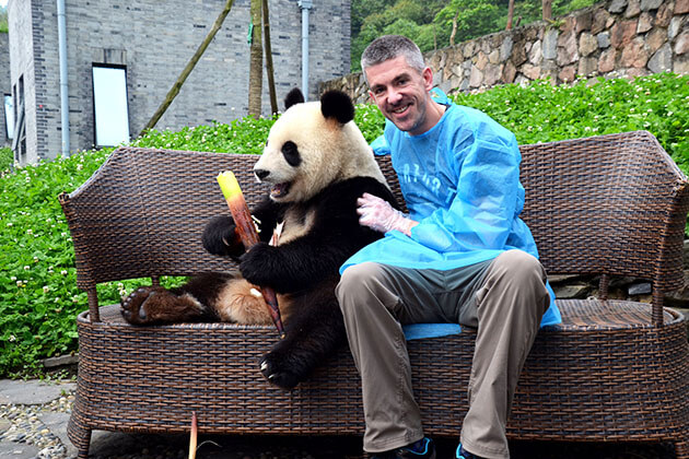 Volunteering at the Dujiangyan Panda Base