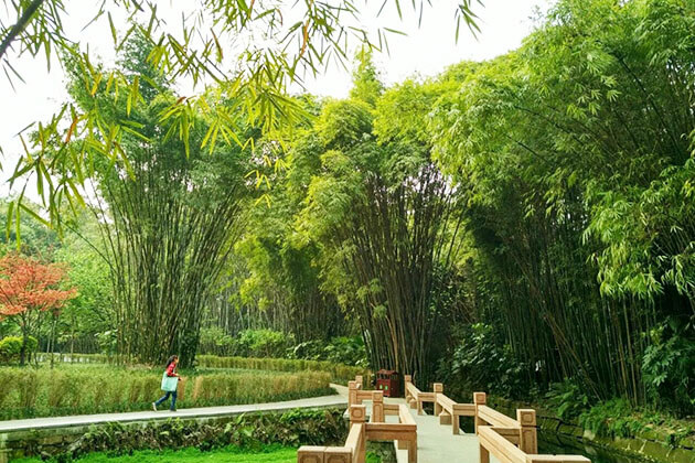 Wangjiang Pavilion Park in Chengdu